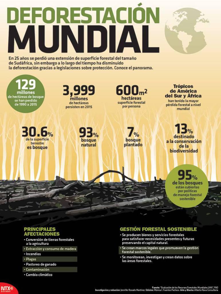 20150929-infografia-deforestacion-mundial-candidman.jpg